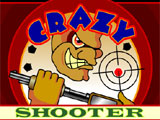Flash игра Crazy Shooter